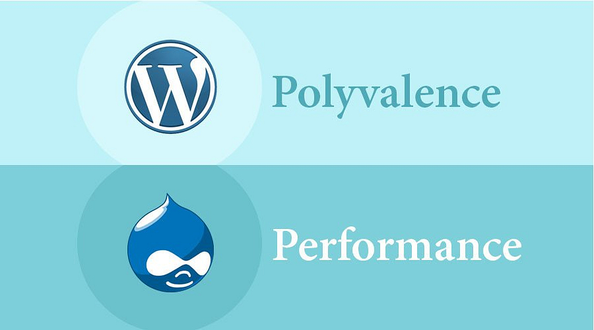 WordPress vs. Drupal : Deux communautés fortes mais différentes